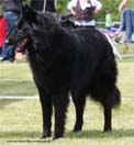 Black Balde z Kovarny